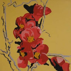 andie-scott-chinese-quince