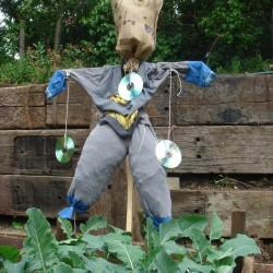 andie-scott-olden-scarecrow