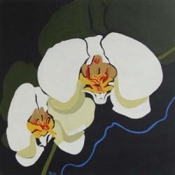 andie-scott-orchid06
