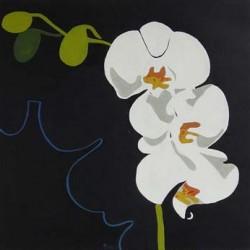 andie-scott-orchid1