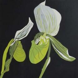 andie-scott-orchid2