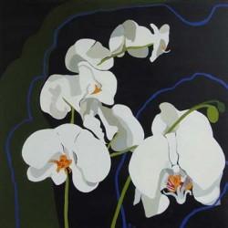 andie-scott-orchid5
