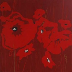 andie-scott-poppies