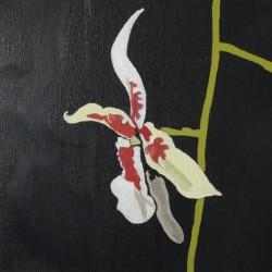 andie.scott--orchid12